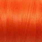50 Celosia Orange